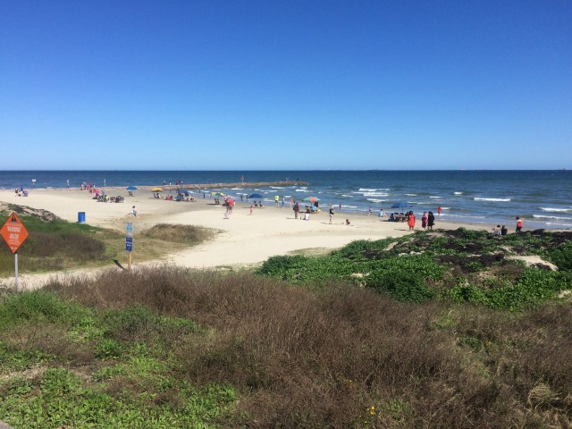 Galveston Island State Park Beach